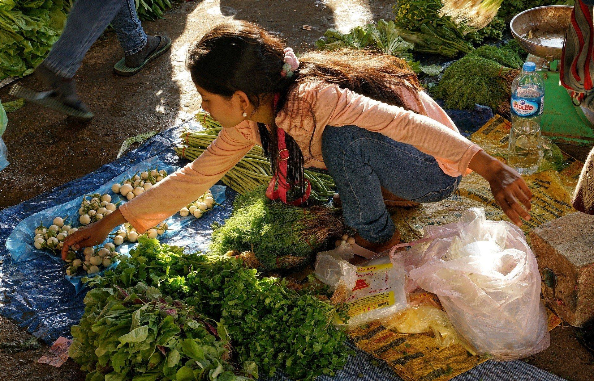 Seller at Dao Heuang Market in Pakse